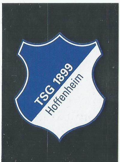 TSG 1899 Hoffenheim badge