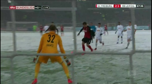 Niederlechner goal - SCF v RBL 3